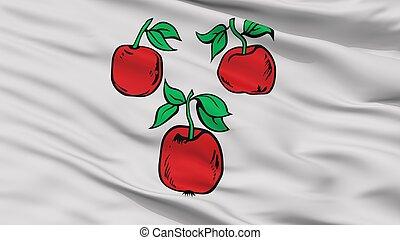 ciudad, bandera, korochansky, primer plano, rusia, rayón,...