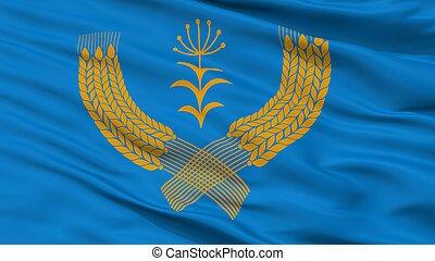 ciudad, bandera, , primer plano, tuymazinsky, rusia, rayón,...