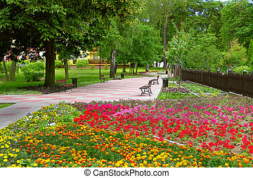 ciudad, flores, parque, primavera