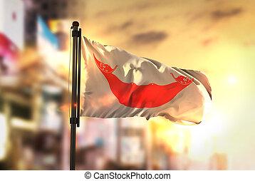 ciudad, isla, contra, confuso, bandera, salida del sol,...