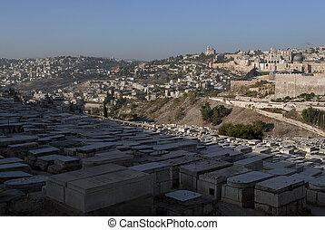 ciudad, piedra, aceite, viejo, israel., primer plano, monte,...
