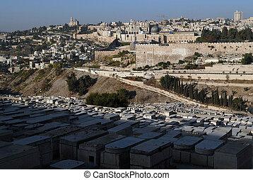 ciudad, piedra, antiguo, viejo, israel., aceitunas,...