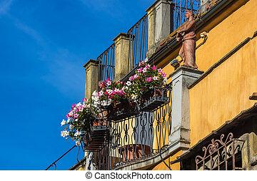 ciudad, viejo, olla, calle, flores, florencia, típico