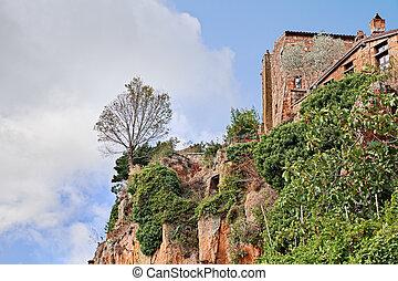 Civita di Bagnoregio, Viterbo, Lazio, Italy: the rock face of the tuff hill with a tree on the precipice