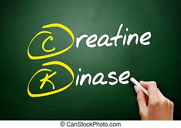 CK - Creatine Kinase acronym, concept on blackboard