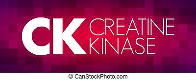 CK - Creatine Kinase acronym, medical concept background