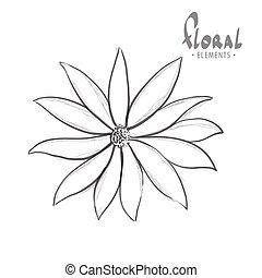 clásico, flor, en, un, fondo blanco