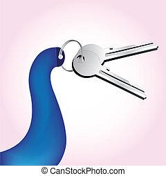 clés, vecteur