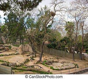 clôture, animal, zoo