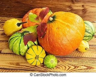 clair, bois, pumpkin., feuille, vie, table., automne, encore, potirons