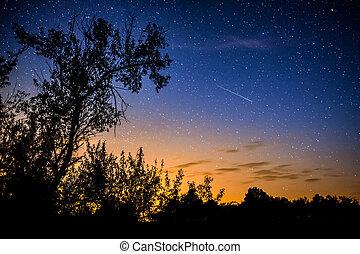 clair, ciel nuit, à, voie lactée