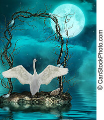 clair lune, cygnes