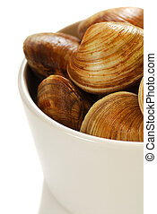 Fresh cherrystone clams in a white bowl