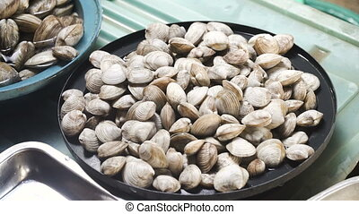 Clams in Asian market. - Fresh Clams in Asian market. Sale...