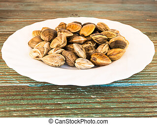clams on a white plate