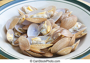 clams, seafood, used to make food such as soup or fried.