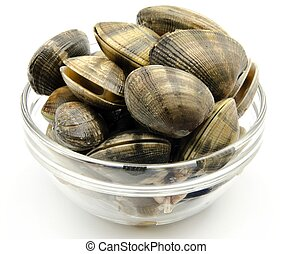 Clams stacked next to each other in a glass jar
