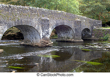 clara lara bridge