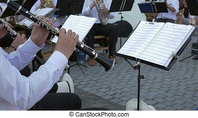 Clarinet Musician Performs with Ban