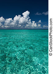 claro, turquesa, agua, en, playa tropical
