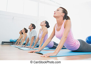 classe, exercitar, fila, condicão física, estúdio