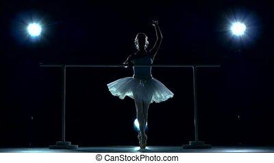 classic ballet dancer in white tutu posing on one leg next...