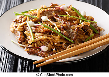 classic Cantonese?Beef Chow Fun?Noodles closeup on the plate...