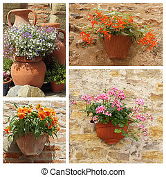 classic ceramic planters with blooms - group of images