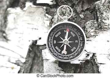 Classic compass on background with birch bark texture