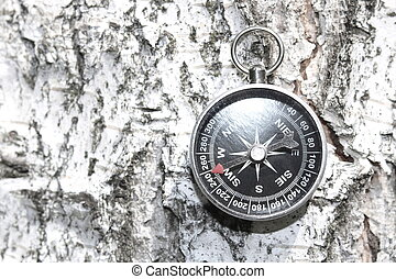 Classic compass on natural wooden background