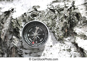Classic compass on wooden background with birch bark texture