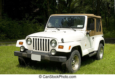 classic soft top utility four wheel drive truck vehicle on suburban lawn