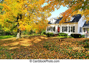 Classic New England American house exterior during fall. -...