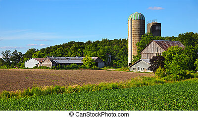 Older farm and field in spring