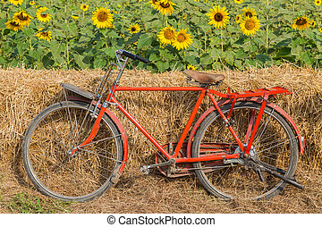 Classic red bicycle with sunflower