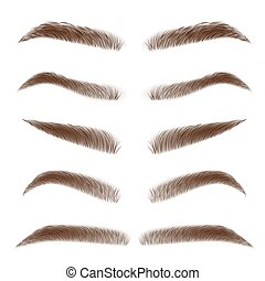 Classic type and different eyebrow thickness. Various types of eyebrows. Brown eyebrow bag. Brown eyebrows isolated on white background. Vector illustration