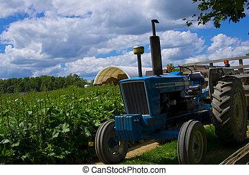 Classic Vintage Farm Tractor