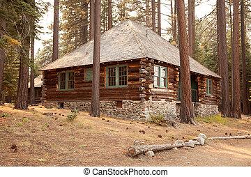 Classic Vintage Log Cabin