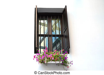 Classic window with Petunia pot on white wall
