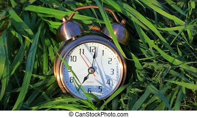classical alarm clock lying and ringing in grass