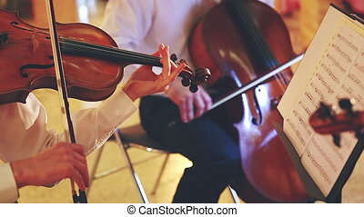 Classical Musicians - A Group of Musicians Playing Violin...