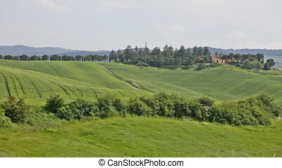 Classical rural summer landscape in Tuscany, Italy