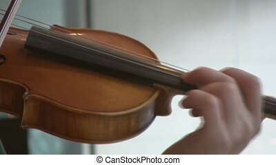 Classical violinist. - A young man plays a violin. Three...