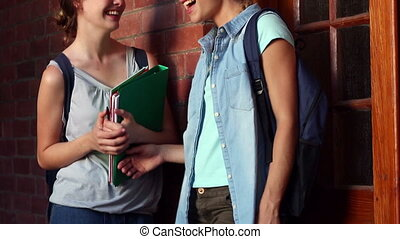 Classmates standing in hallway chatting - Classmates...