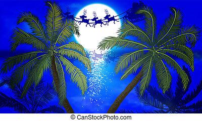 claus, 背景, 飛行, 木, 月, やし, santa