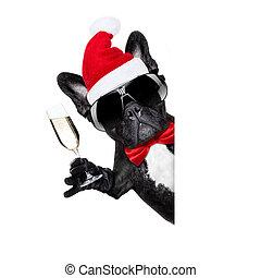 claus, navidad, perro, santa
