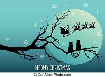 claus, santa, aufpassen, vektor, weihnachtskarte, katzen
