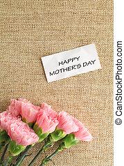 claveles rosados, flor, para, día de la madre