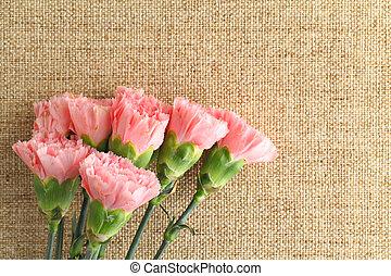 claveles rosados, flor, para, madre, día