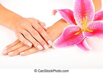clavo, salón, mujer, receiving, manicura